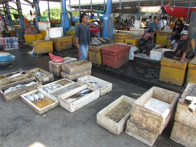 Harga Ikan Melonjak Akibat Angin Barat