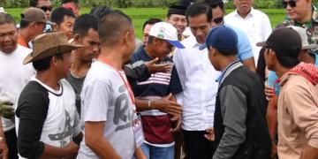 Tinjau Padat Karya Tunai di Wajo, Presiden Jokowi: Tahun Depan Dibangun Tanggul Danau Tempe