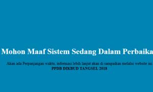 Karut Marut PPDB Online SMP di Tangsel, Pendaftaran Melalui ppdb.dikbudtangsel.com Distop Sementara