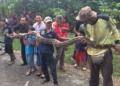 Ular Piton 6 Meter Muncul di Paku Jaya