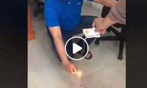 Viral Video Kopi Luwak Menyala Jika Dibakar, Ini Penjelasan BPOM