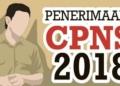 Dari 13.345 Eks Tenaga Honorer K-II, Hanya 8.765 Pelamar Telah 'Submit' di SSCN BKN