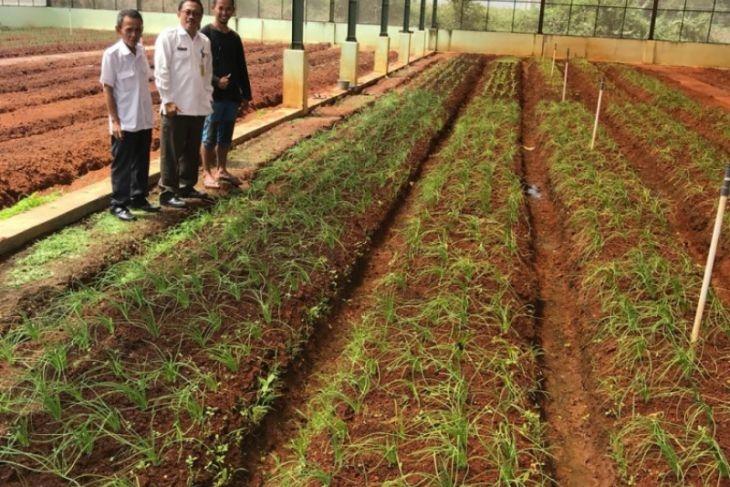 Dinas Pertanian Tangerang kekurangan 157 tenaga PPL