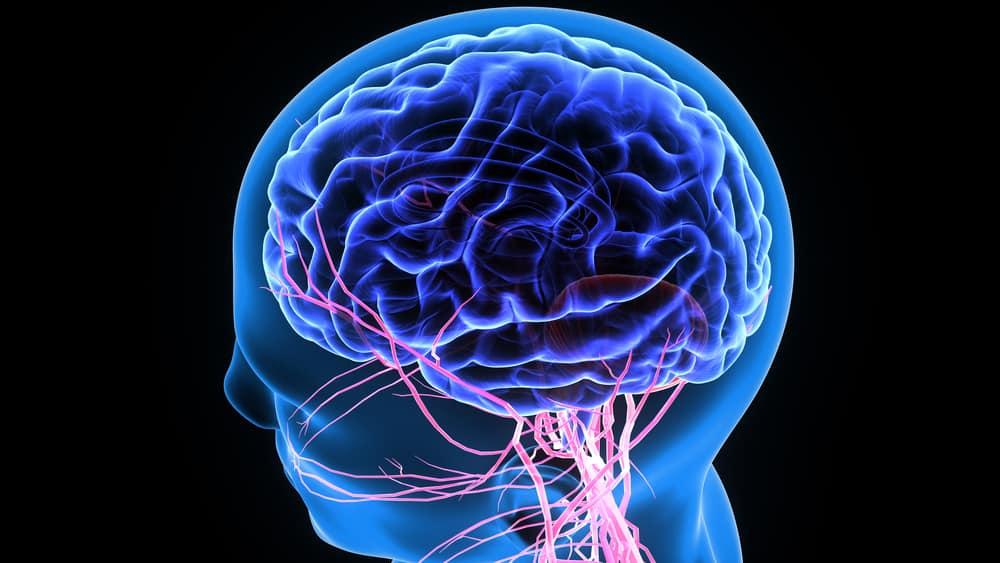 gangguan otak dan sistem saraf