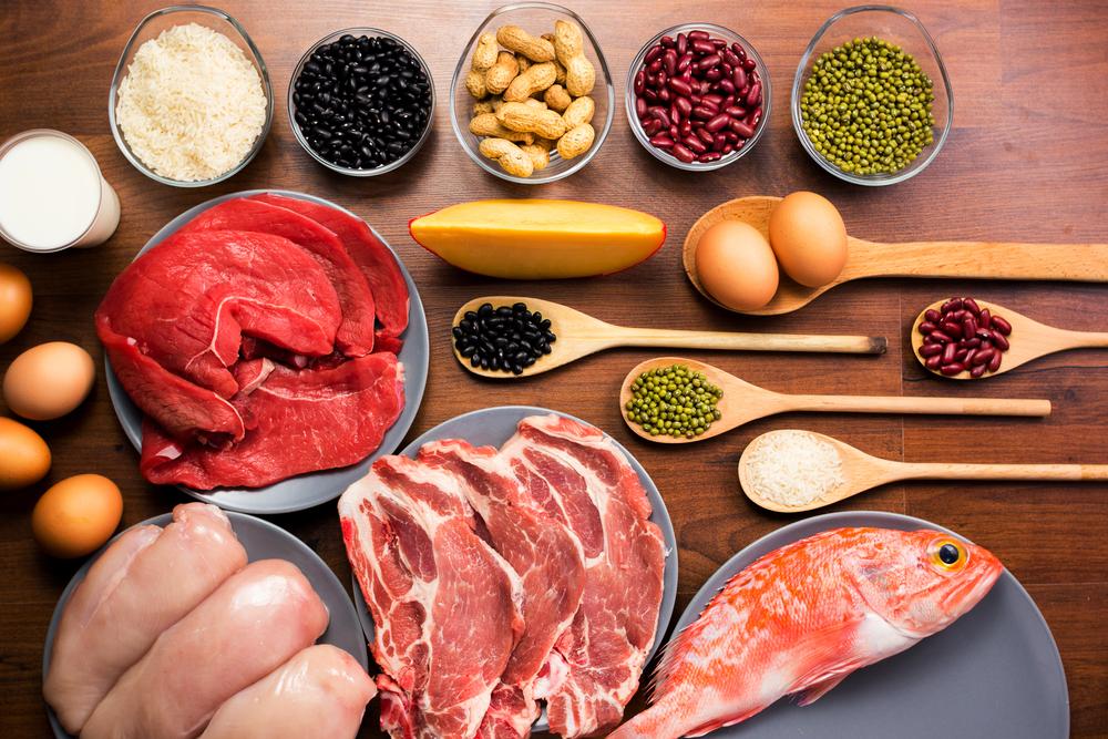 protein hewani dan protein nabati