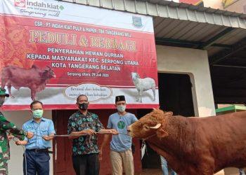 Penyerahan hewan kurban dari PT Indah Kiat Pulp and Paper Tangerang kepada perwakilan masyarakat. (RAY)