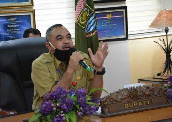 Bupati Tangerang Ahmed Zaki Iskandar. (DOK)