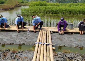 Penanaman bibit mangrove di Pantai Utara Tangerang. (RAY)