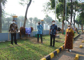 Penyerahan hewan kurban dari Managemen HERO Group untuk masyarakat. (RAY)